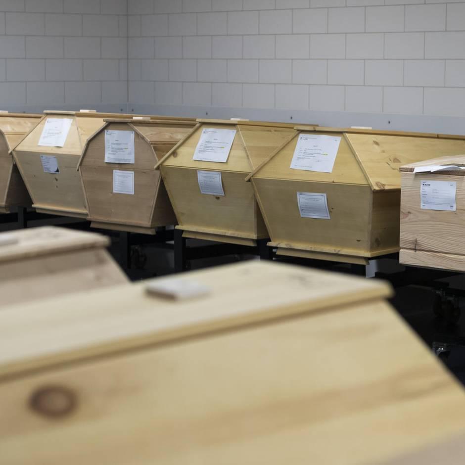 Nachrichten aus Deutschland: Zwischen Schrottautos: Acht Leichen in alter Kfz-Werkstatt gefunden