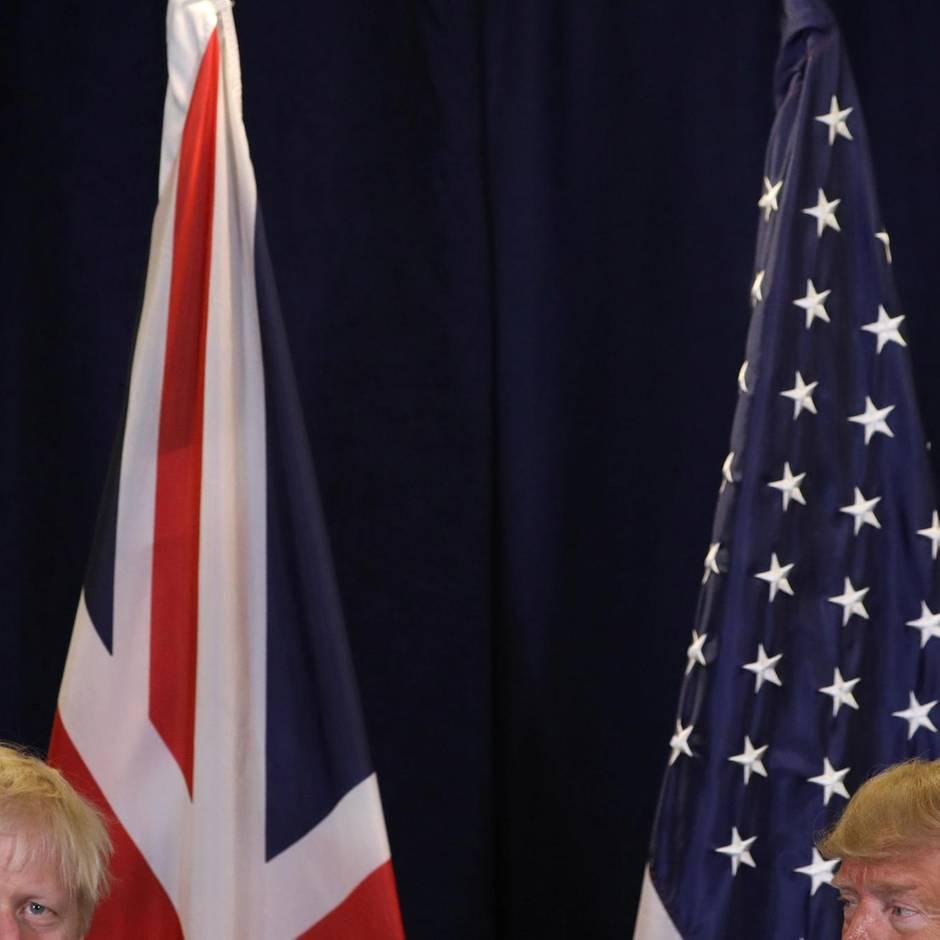 Egomanie vs. Demokratie: Trump und Johnson brechen alle Regeln – wie wehrhaft ist die Demokratie?