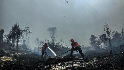 In Kampar Indonesien versuchen Feuerwehrleute, einen Waldbrand zu löschen
