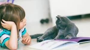 Ein Mädchen liest einer grauen Katze aus einem Buch vor
