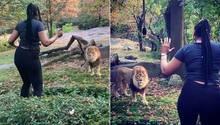Virales Video: Frau klettert über Zaun und nähert sich dem Löwengehege im New Yorker Bronx Zoo