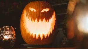So schaurig schön kann ein Halloween-Kürbis aussehen