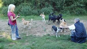 Birgit K. mit ihren Hunden, die beschlagnahmt und von der Staatsanwaltschaft verkauft wurden