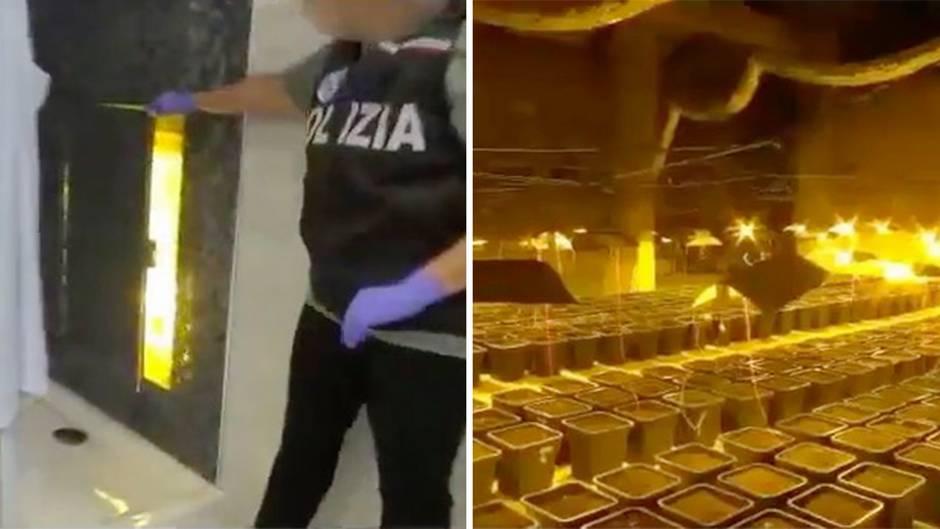 Kreatives Versteck: Geheimtür in der Duschkabine – Italienische Polizei nimmt gewaltige Drogenplantage hoch