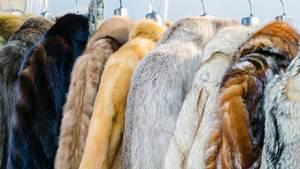Pelzmäntel auf einer Kleiderstange