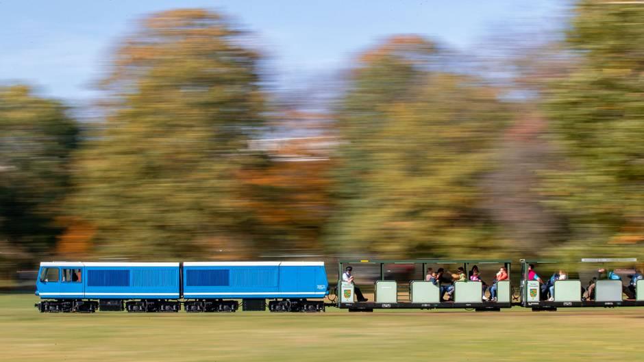 """Dresden, Deutschland. 46 PS bringt die Lokomotive EA02 auf die Schienen. Sie zieht Züge durch den Großen Garten in Dresden. Das Besondere der Parkeisenbahn: Sie wurde 1950 als Kindereisenbahn gegründetund zu Zeiten der DDRals """"Pioniereisenbahn Dresden"""". Kinder und Jugendliche sollten so an Bahnberufe herangeführt werden. Noch heute üben sie die meisten Tätigkeiten bei der Dresdner Parkeisenbahn aus, sind Schaffner, Schrankenposten oder Fahrdienstleiter."""