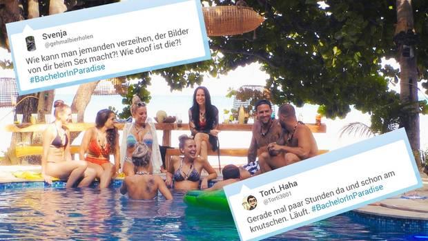 """Bei Twitter wird über die erste Folge von """"Bachelor in Paradise"""" diskutiert"""