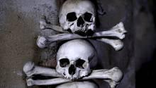 Schädel in der Knochenkriche