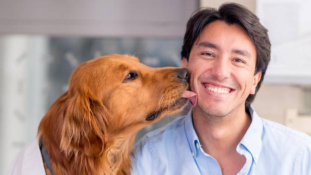 Mann wird von Hund geküsst