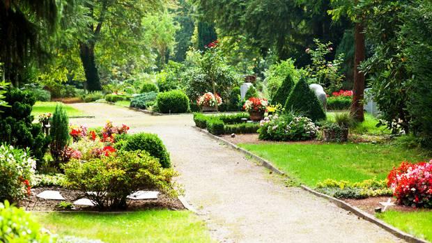 Hamburg erlaubt gemeinsame Bestattungen von Mensch und Tier