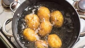 Kartoffeln kochen in einem Topf
