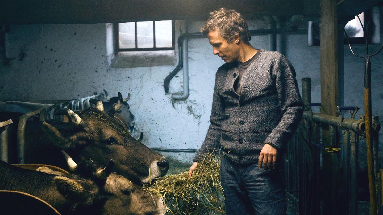 """""""Das System Milch"""": Regisseur Andreas Pichler über den Milch-Irrsinn"""