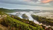 Reise zu Frankens edlen Tropfen: Der Wein vom Main