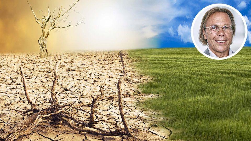 Gegenüberstellung verdorrte Wüste und grüne Wiese