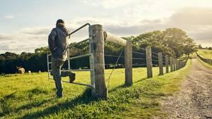 Ein Bauer lehnt an einem Gatter
