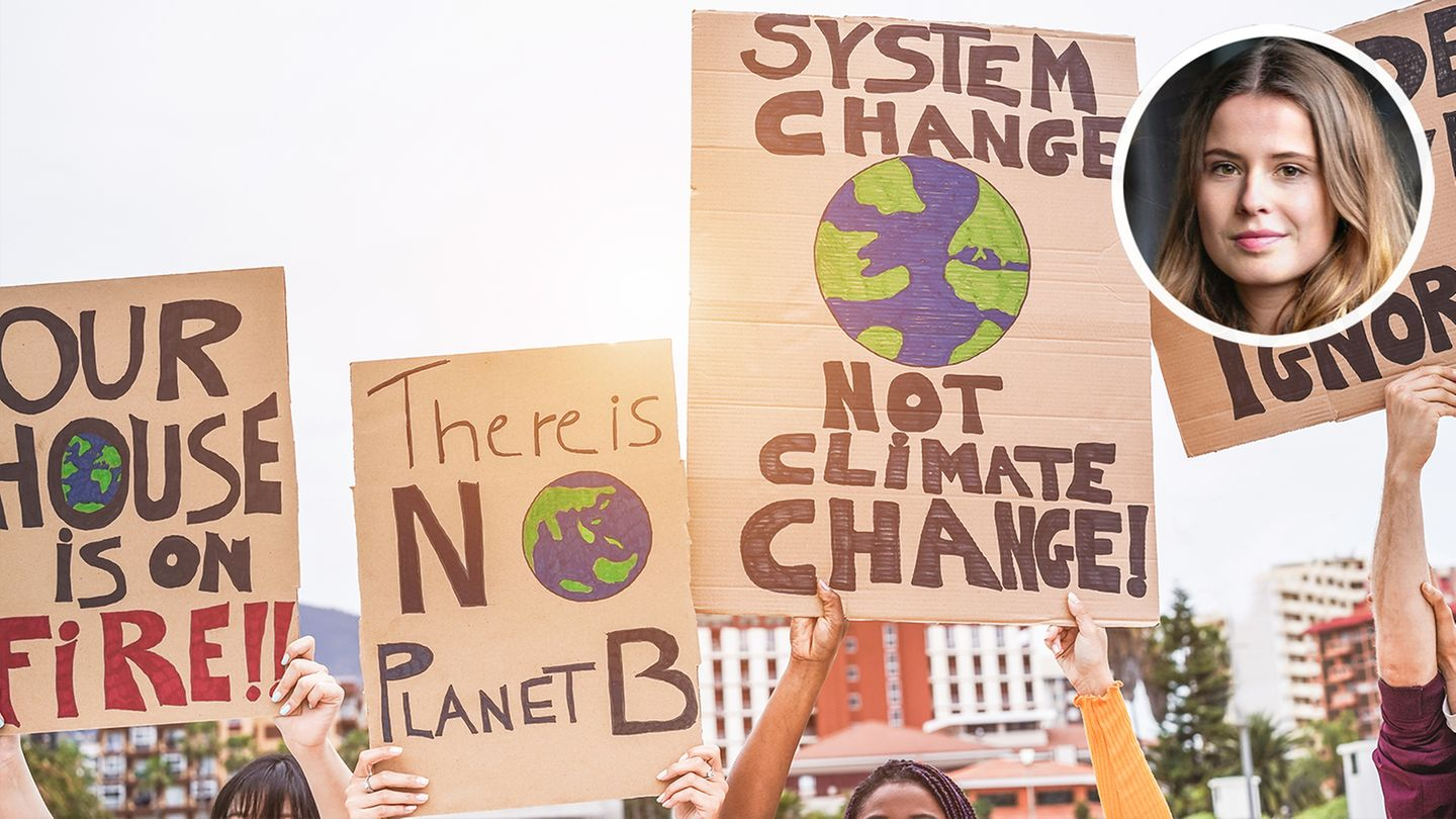 Fridays for Future Plakate