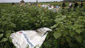 Ein Teil des Wracks der Boeing 777 der Malaysia Airlines mit der Flugnummer MH17