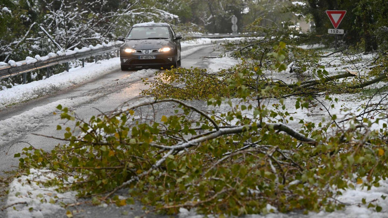 Abgebrochene Äste behindern den Verkehr nach Schneefällen in Südfrankreich