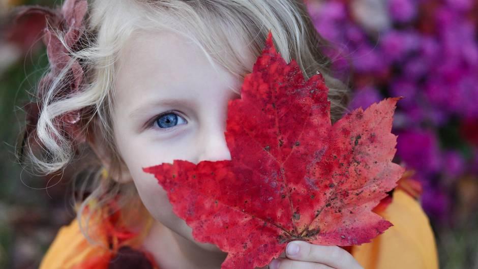 Ein Mädchen hält ein rotes Ahornblatt vor sein Gesicht