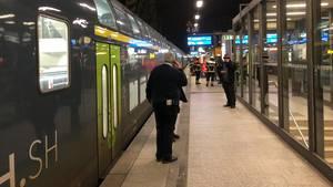 Bahnhof Dammtor in Hamburg