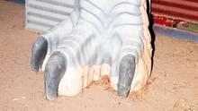 Was macht der Fuß da? Winton ist die Dino-Capital Australiens