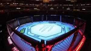 Ein MMA Kampfring (Archivbild)