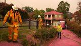 Häuser, Wege und Fahrzeuge in diesem Vorort von Sydney haben einen pinkfarbenen Überzug