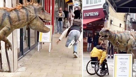 Der einzige gute Streich im Internet: Diesen Dino-Prank müssen Sie sehen