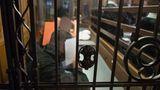Der Angeklagte Cenkay T. (vorne) sitzt neben Marcel K. (von vorne nach hinten), Steve S. und Marko P..im Gerichtssaal.