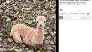 Ein Screenshot eines Facebook-Posts
