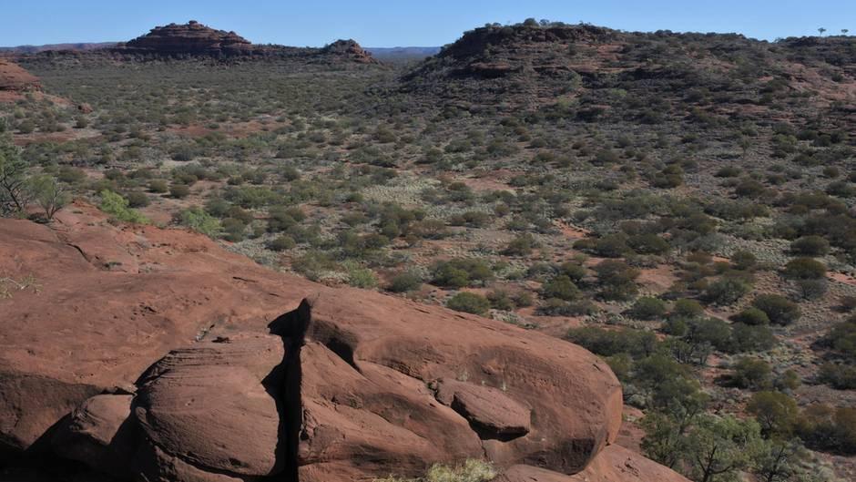 Vermisste Frau nach zwölf Tagen im Outback entdeckt