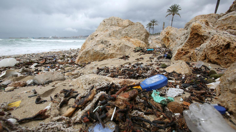 Müll am Strand in Mallorca