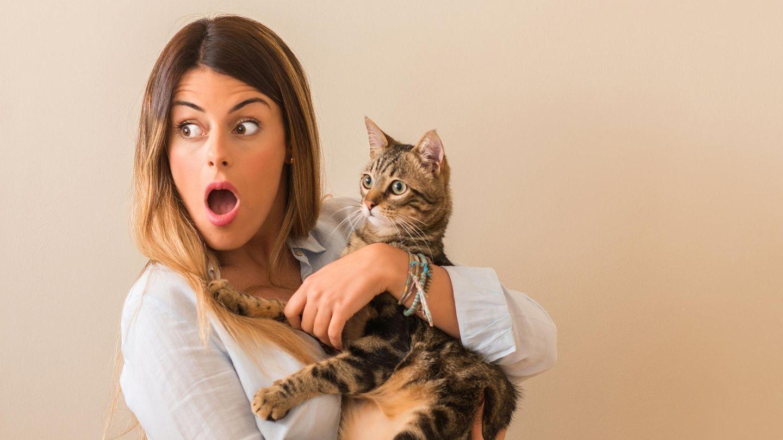 Eine Frau mit Katze auf dem Arm guckt entsetzt, die Katze auch