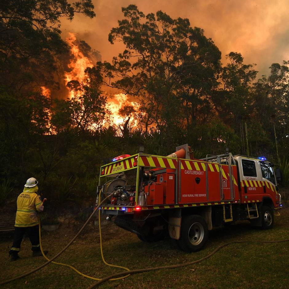 """Brandsaison: Feuer nahe Sydney verschmelzen sich zu """"Mega-Brand"""" – 300.000 Hektar in Flammen"""