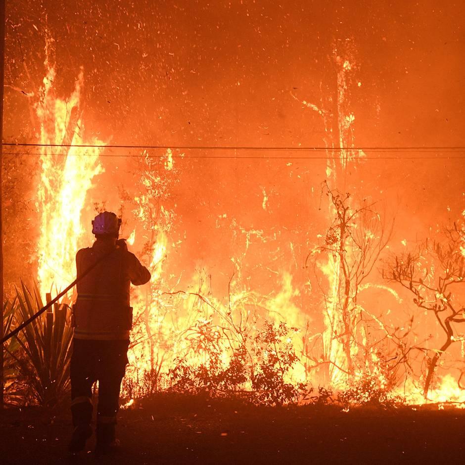 """News von heute: Buschbrände in Australien bilden """"Megafeuer"""""""