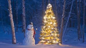 weiße weihnachten - faktencheck zur häufigkeit früher und heute