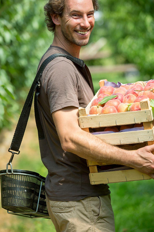 Die norddeutschen Pfirsiche verkauft Lasse Tamke auf dem Wochenmarkt