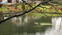 Nachrichten aus Deutschland: Das Auto lief voll Wasser und sank bis auf den Grund