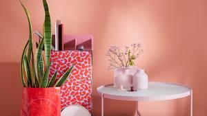 Couch Lieblingsstücke: Zehn Tipps für kleine Wohnungen