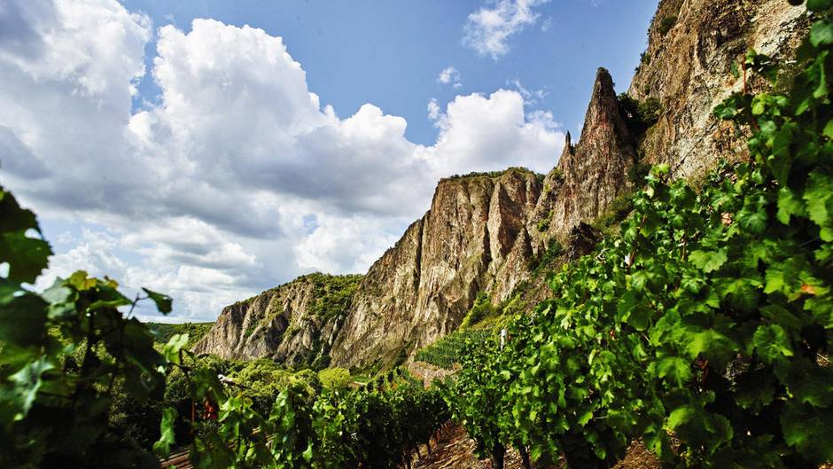 Der Rotenfels ist eine bei Kletterern geachtete Steilwand über der Nahe. Ihre Steinmassen speichern die Hitze des Tages und reflektieren sie in der Nacht