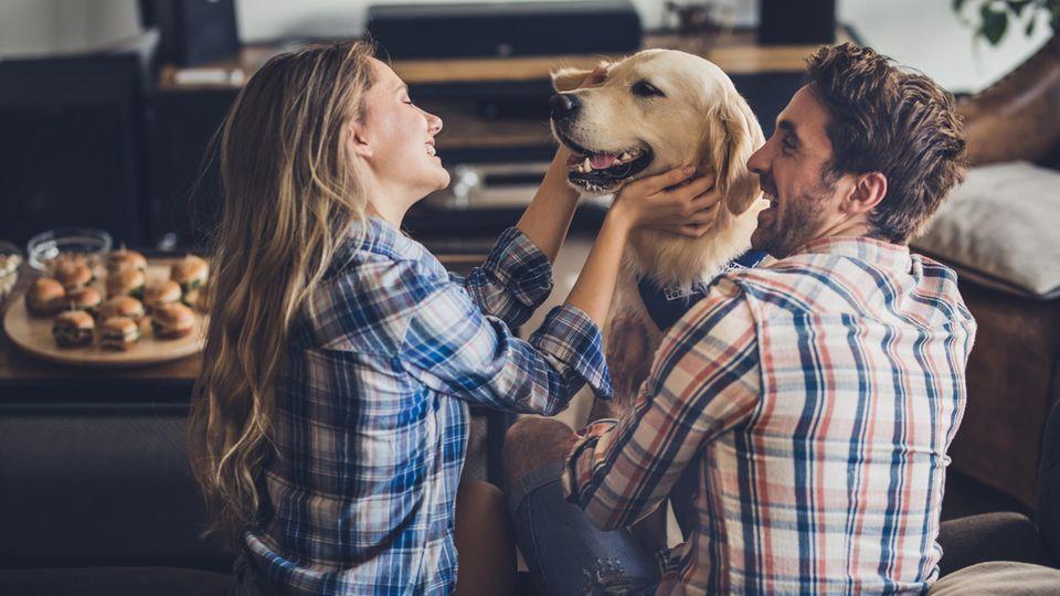 Es gibt zahlreiche Geschenke für Hundebesitzer: Hier finden Sie zehn originelle und sinnvolle Ideen