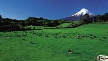 Taranaki auf der Nordinsel Neuseelands