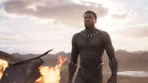 Chadwick Boseman spielt T'Challa, den König von Wakanda. Bekannter ist er unter dem Namen des Marvel-Superhelden Black Panther