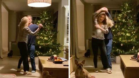 Kuriose Entdeckung: Eule im Weihnachtsbaum - so rettete eine Familie ihr das Leben