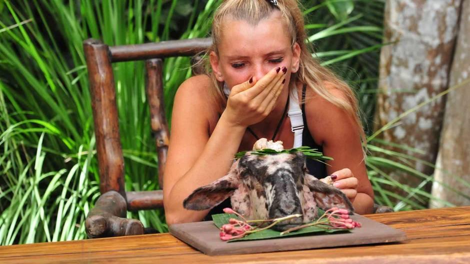 Dschungelcamp 2020: Stars müssen keine lebenden Tiere mehr essen