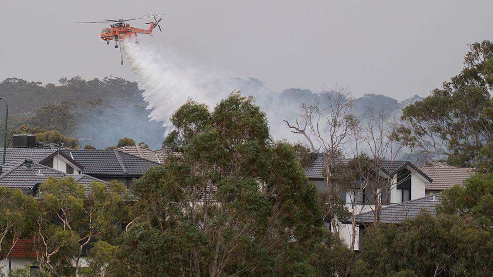 Waldbrände Australien