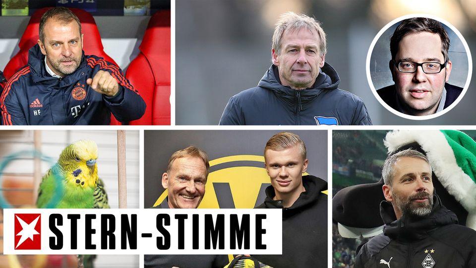 Bundesliga Rückblick