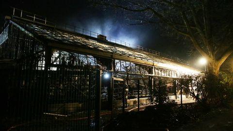 Mehr als 30 Tiere kamen bei dem Feuer ums Leben