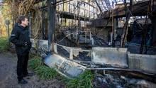Ein Mann in schwarzer Windjacke betrachtet die verkohlten Trümmer des Affen-Tropenhauses im Zoo Krefeld