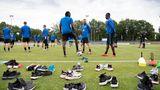 Hertha BSC Berlin: Orlando
